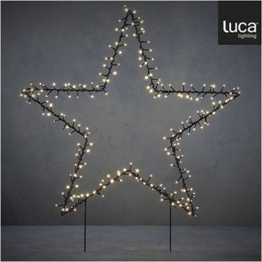Luca garden Star Stake